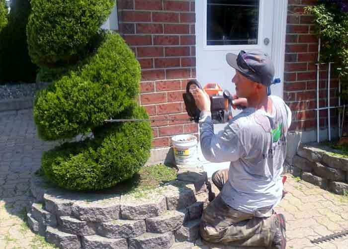 Service entretien hortinature r alisations for Service entretien pelouse